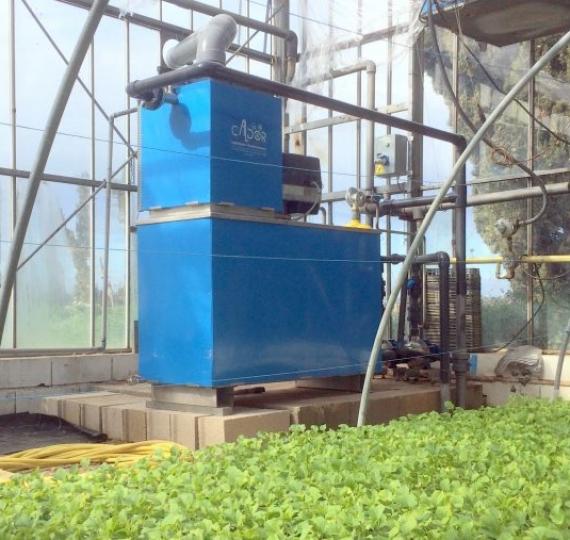 Installation d'une chaudière MiniCal de 200kw dans une serre de jeunes plants