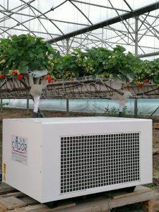 deshumidificateur dans serres fraises hors sol