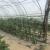 Chauffage de serres tunnels tomates, fraises, aubergines et concombres en basse température